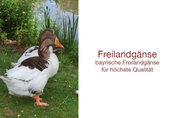 Freilandgaense59524de725936